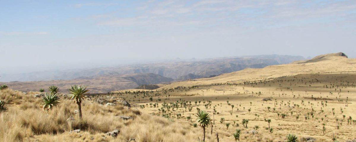 ethiopie-castricum-2018-goede-herder-parochie